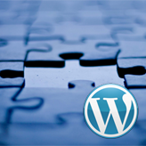 WordPress-Troubleshooter.-Site-header-menu-missing-or-does-not-look-like-demo-header-menu