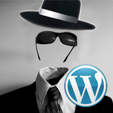 WordPress Troubleshooter. Submenus are not visible on the site