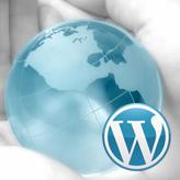 WordPress. Cherry widgets overview
