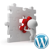 WordPress Troubleshooter. Blank screen after importing dump
