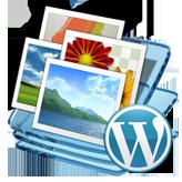 WordPress. Как удалить избранное изображение со страницы записи
