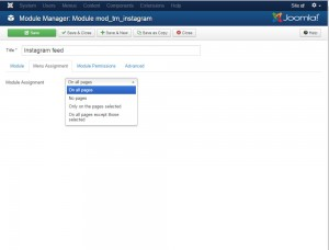 Joomla._How_to_work,_set-up_and_manage_TM_Instagram_module_6