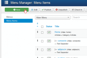 Joomla_3.x-How_to_add_external_link_to_menu-3