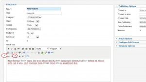Joomla_How_to_insert_a_list_into_an_article_2