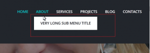 how_to_manage_submenu_css_styles_3