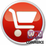 WooCommerce. How to manage checkout options