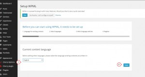 wordpress - How to configure multilanguage using WPML plugin-2
