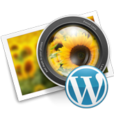 WordPress Cherry 3.x. How to deactivate Parallax slider and use default