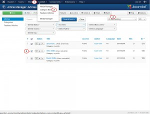 Joomla_3.x._How_to_duplicate_a_page_with_it's_content_7