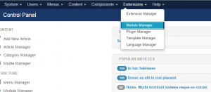 Joomla_3.x._How_to_get_rid_of_Olark_chat_feature