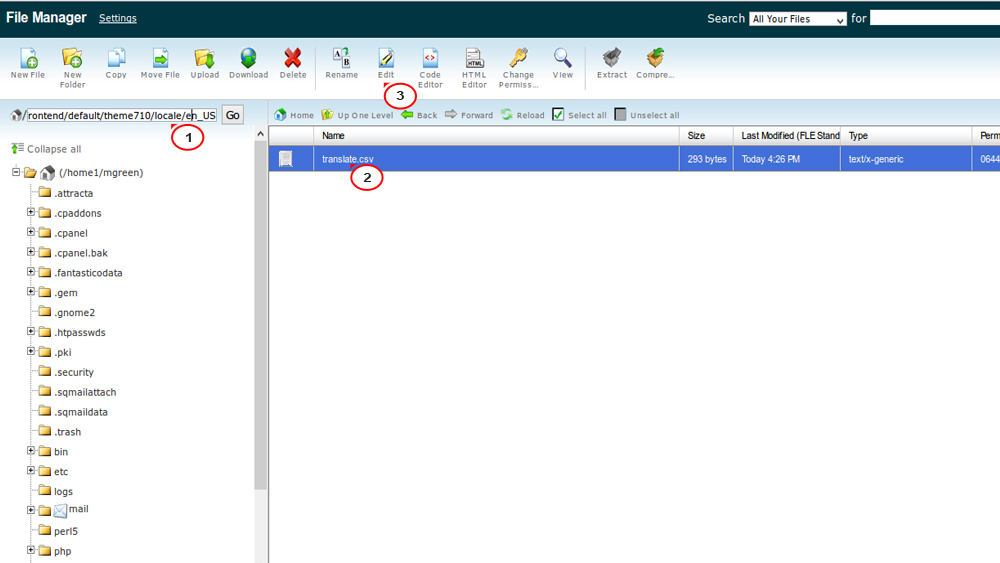 Magento  How to manage CSV files translations - Template