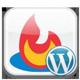 wordpress-how-to-create-feed-url-with-feedburner