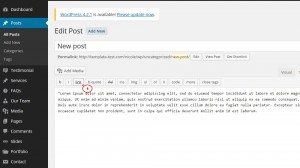 wordpress_how_to_create_a_link_in_post_page_and_make_it_open_in_a_new_tab-3