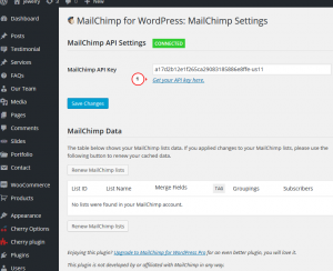 WordPress.-How-to-set-us-MailChimp-for-WordPress-Lite-plugin-2