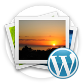 WordPress. How to remove featured images from posts single pages