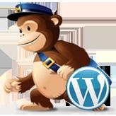 WordPress. Как настроить плагин MailChimp для WordPress Lite