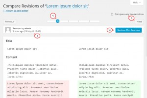 wordpress_revisions_management4