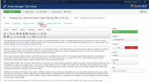 Joomla 3.x-how to remove author name and date from a single article and all articles-2