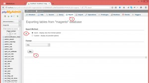 magento_move_store_from_localhost_to_live_server2