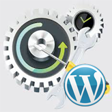 WordPress Troubleshooter. How to deal with errors in Customize section