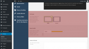 cherryframework_4._how_to_manage_footer_background_layout_settings_5