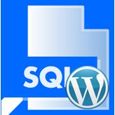 WordPress. Wie man die Demodaten (der Import der SQL-Datei auf dem GoDaddy Server) installiert
