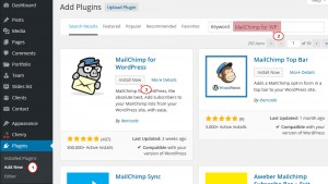cherry4_how_to_setup_mailchimp_plugin5