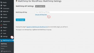 cherry4_how_to_setup_mailchimp_plugin6