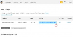 cherry4_how_to_setup_mailchimp_plugin8