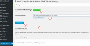 cherry4_how_to_setup_mailchimp_plugin9