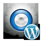 CherryFramework 3. Как изменить размер миниатюры для страницы отдельной записи пользовательского типа