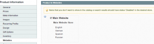 Magento_How_to_check_why_Product_is_not_displaying_on_the_site_4