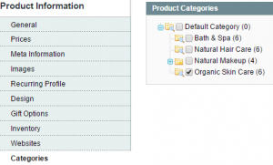 Magento_How_to_check_why_Product_is_not_displaying_on_the_site_5
