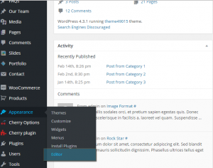 WordPress_How_to_exclude_category_from_displaying_on_Blog_page