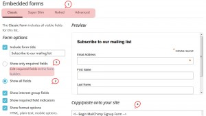 cherry4_how_to_customize_mailchimp_form4