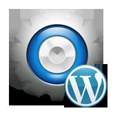 CherryFramework 3. How to change logo and logo icon