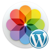 WordPress. How to resize and crop images in Media library
