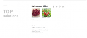 How_to_use_Cherry_Instagram_Widget_img5