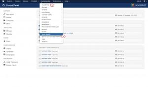 Joomla_3.x._How_to_configure_Smart_Search_2