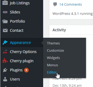 WordPress-How_to_remove_the_Theme_Editor_menu_from_the_Dashboard-1