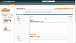Magento._How_to_add_static_block_to_category_page-2