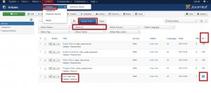 Joomla 3.x. How to check the article on the front-end.1