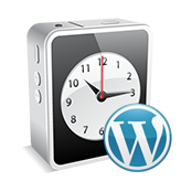 wordpress-how-to-work-with-appointments-based-on-booked-plugin