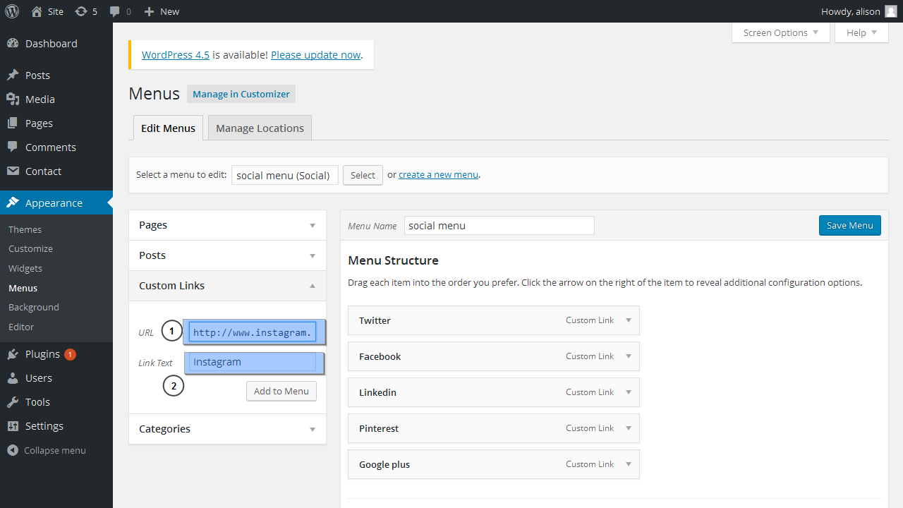Update How To Add Icons To Wordpress Menus: WordPress Bloggings Themes. How To Manage Social Icons