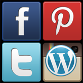WordPress Bloggings themes. How to manage social icons menu