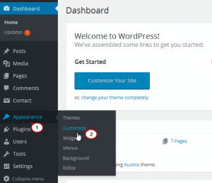 WordPress_Blogging_themes-How_to_manage_Taxonomy_widget-2