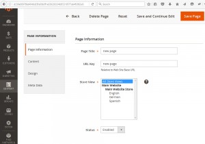 magento-2_how_to_add_duplicate_cms_page-4