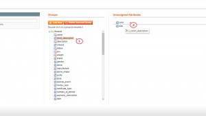 magento_how_to_disable_short_description_field_for_products_6