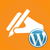 WordPress-Blogging-themes.-How-to-delete-the-author-from-category-pages