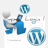 WordPress. How to customize login page logo